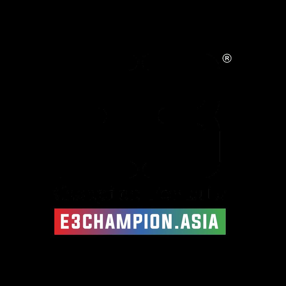 7. E3